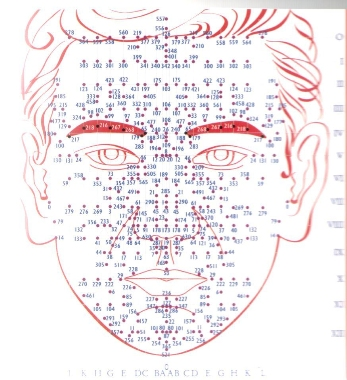 mappa viso MTC